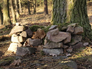 lesní domeček